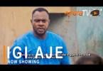 Igi Aje Latest Yoruba Movie 2021 Drama