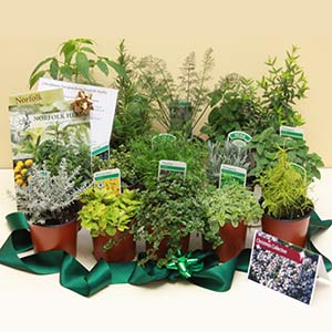 Herb Gifts
