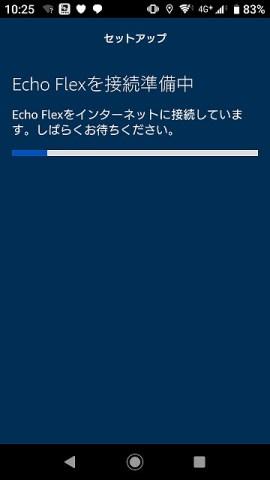 EchoFlexセットアップ
