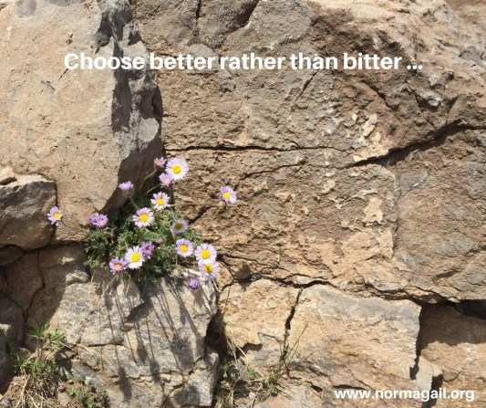 Better or Bitter choice