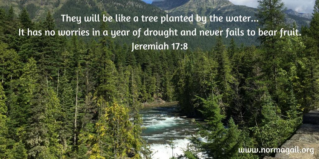 Drought U0026 Living Water Scripture