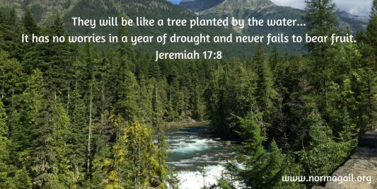 Drought & Living Water scripture