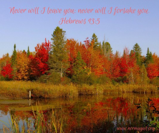 But God: Giving Thanks in Times of Loss scripture