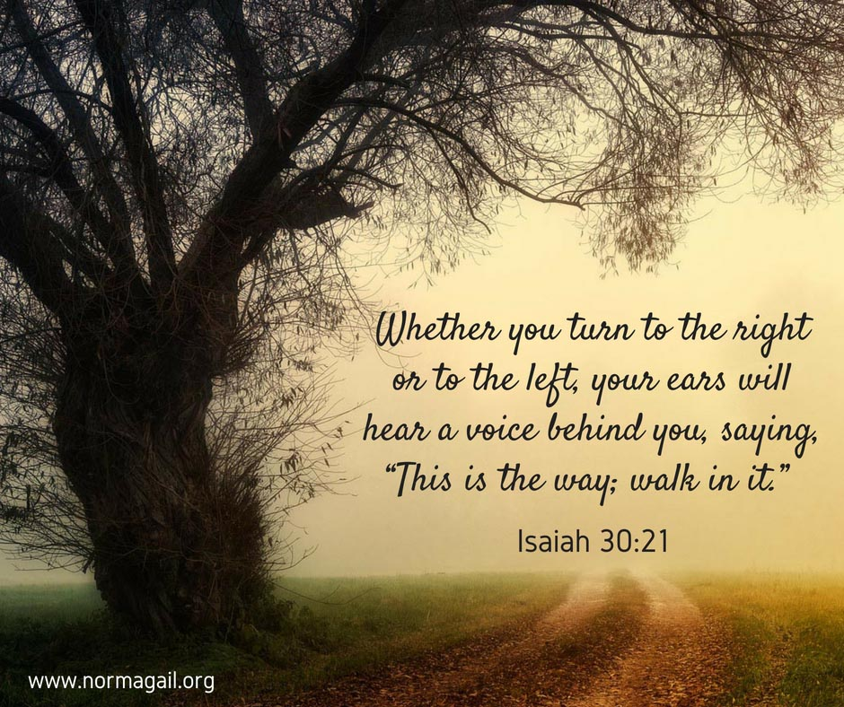 losing my way a 2mefromhim devotional norma gail