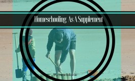 Homeschooling As A Supplement Series – Setting the Foundation