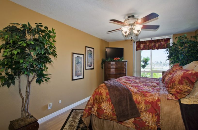E101 bedroom with tv and ceiling fan