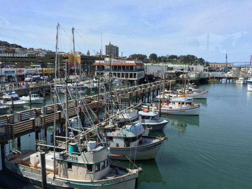 Oceanside Harbor pic