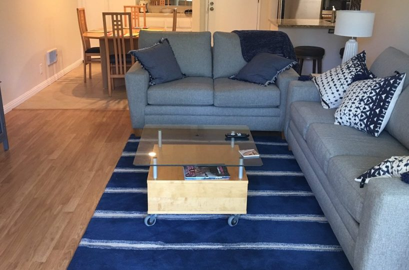 Unit F-106 blue area rug and grey sleeper sofa and love seat