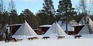 Dogsled tour at Holmen Husky