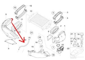 Where does this vacuum hose go?  North American Motoring