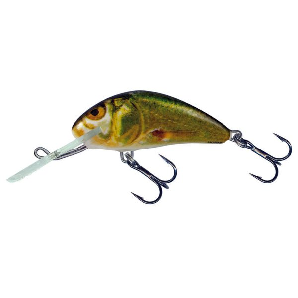 Hornet GSM (Golden Shiner Minnow)
