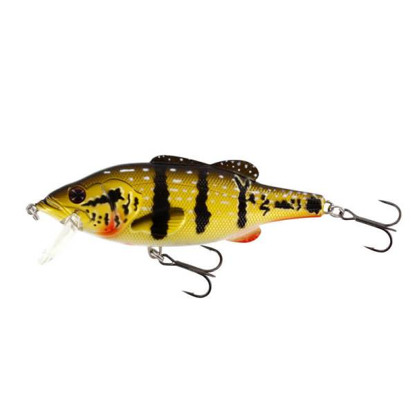 Westin Barry the Bass (HL) - Peacock Bass Colour | North Bay Outfitters