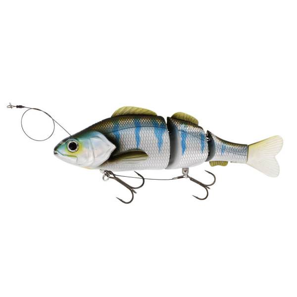 Percy the Perch Inline - Blueback Herring