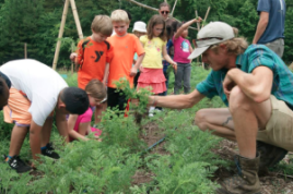 Kids from Durham's EK Powe Elementary School learn about carrots at Durham Public School's Hub Farm. Photo courtesy Hub Farm Facebook page.