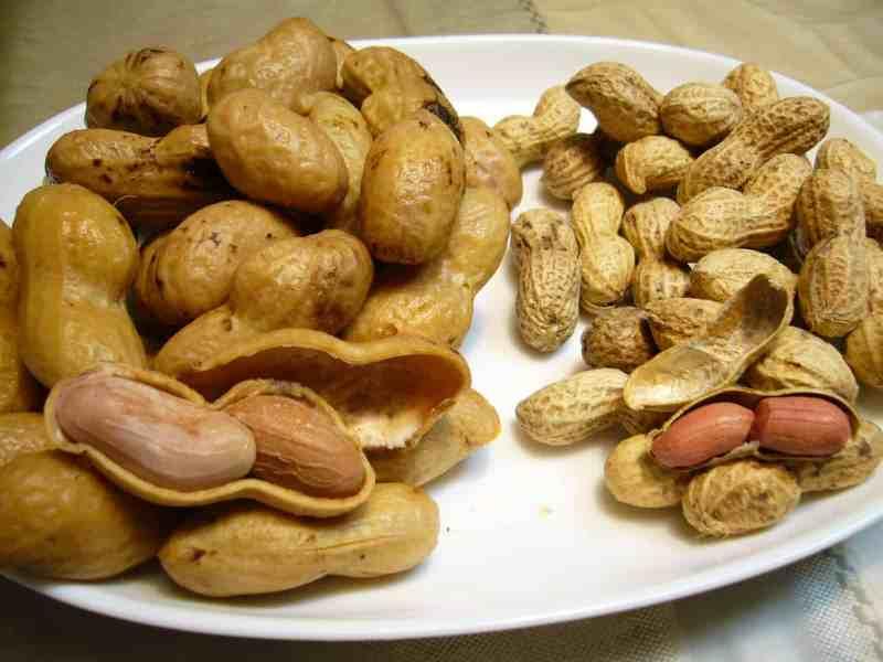 plaate showing boiled peanuts