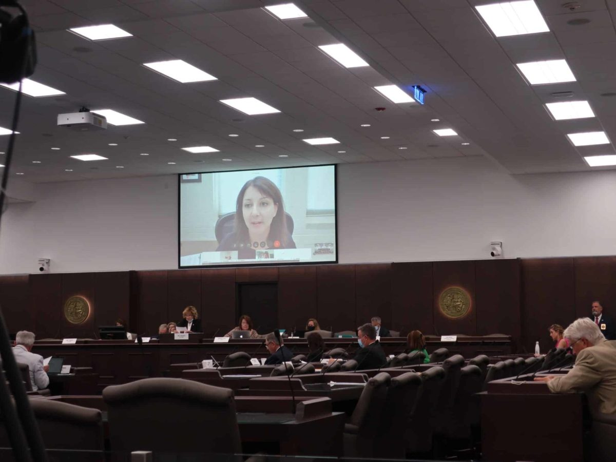 shows a legislative committee room at the General Assembly with a woman's face on the screen to talk about COVID spending