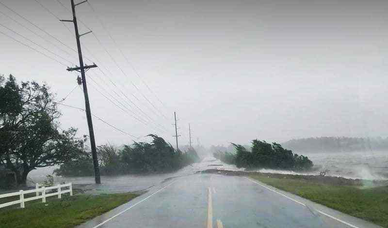 shows water-driven wind blowing across a road as trees bend in the wind during a hurricane