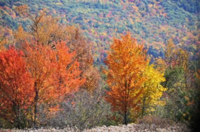 Autumn in the North Carolina Mountains