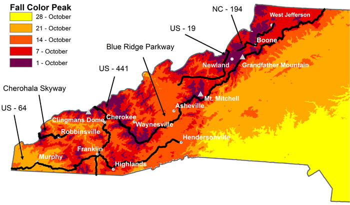 NC Fall Foliage Map (Conceived by Howard Neufeld and Michael Denslow, Map Constructed by Michael Denslow)