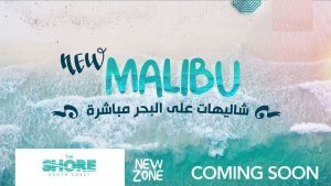 the shore new malibu