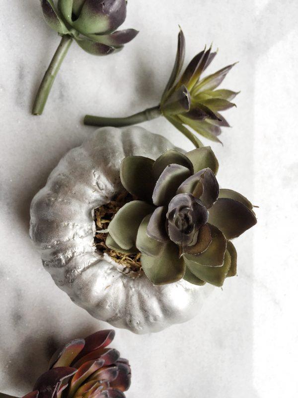 faux succulents and faux pumpkin