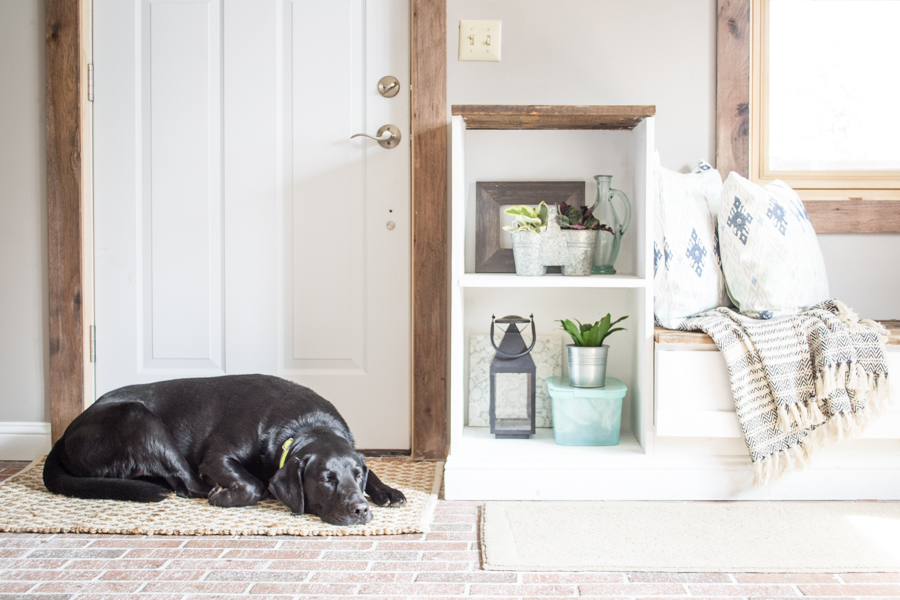 spring entryway home tour with black lab sleeping in the sun