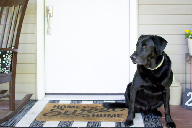 summer front porch with black lab