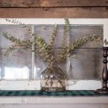 eucalyptus vase with old window on table