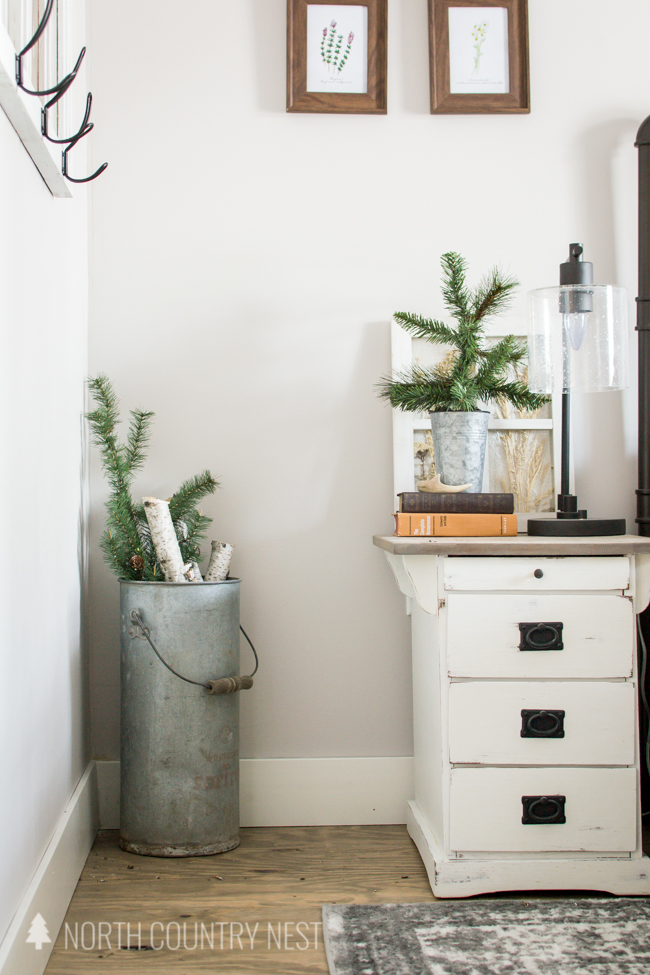 galvanized bucket with evergreen branches and birch trees