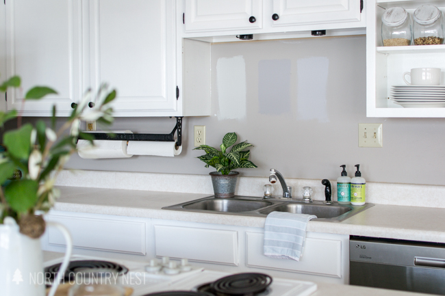 white kitchen cabinets and greenery