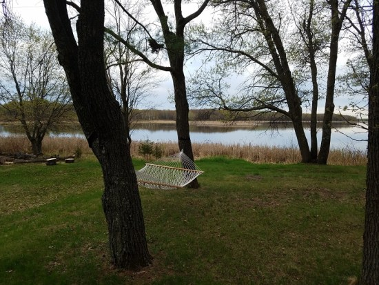 hammock in backyard overlooking lake