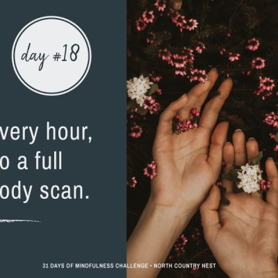 Mindfulness Challenge Day 18: Every Hour, Do a Full Body Scan