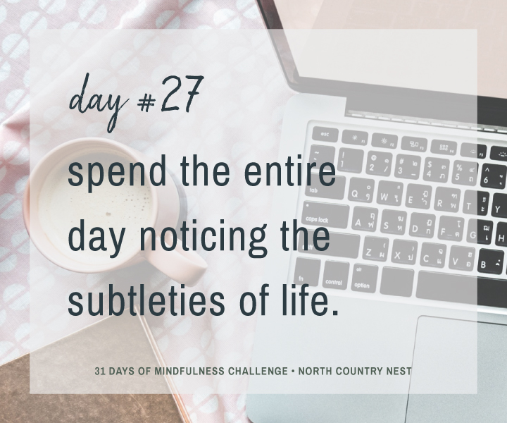 Mindfulness Challenge Day 27: Notice the Subtleties of Life