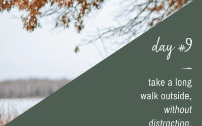 Mindfulness Challenge Day 9: Take a Long Walk Without Distraction