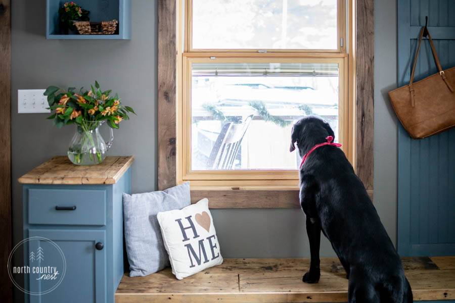 black lab in modern rustic entryway