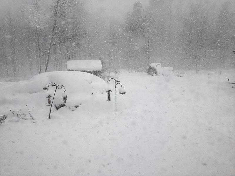 Conditions near Trout Lake in southern St. Lawrence County, N.Y.,  around 11:30 am. Photo: Jeffery Davis
