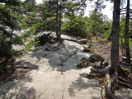 The Barlow Trail on Mt. Kearsarge