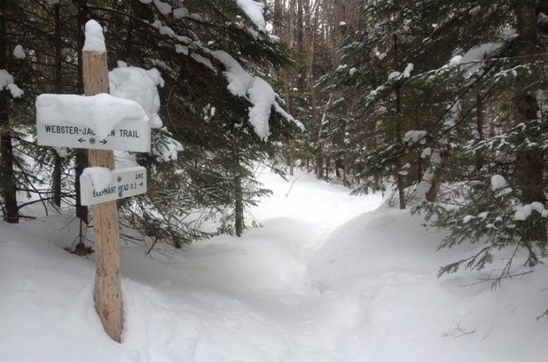 Elephant Head Trail Junction
