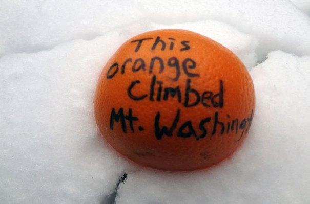 Mt. Washington Orange