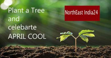 Enlighten Media appeals, Plant a Tree and make April Cool instead of April Fool