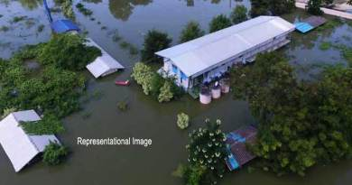 Assam: Dozens of schools under flood water in Hailakandi, classes, exams suspended