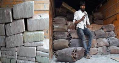 Assam:  BSF Seizes Cannabis worth of Rs 27.22 lakhs