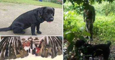 "Assam: Indian Army dog ""jaari"" help in recovery of  explosive and weapons"