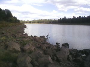 Kaibab Lake - 2012