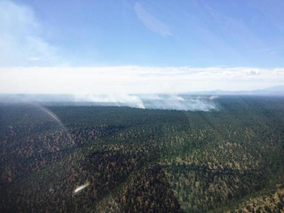 Overview of fire looking southeast. Photo taken Aug. 7, 2015, by Brandon Oberhardt. U.S. Forest Service, Southwestern Region, Kaibab National Forest.