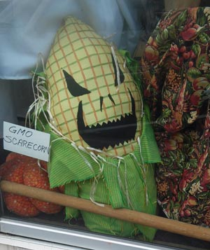 Williams Wear always has the scariest scarecrow. GMO Scarecorn.