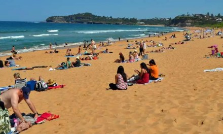 Busy start for beaches