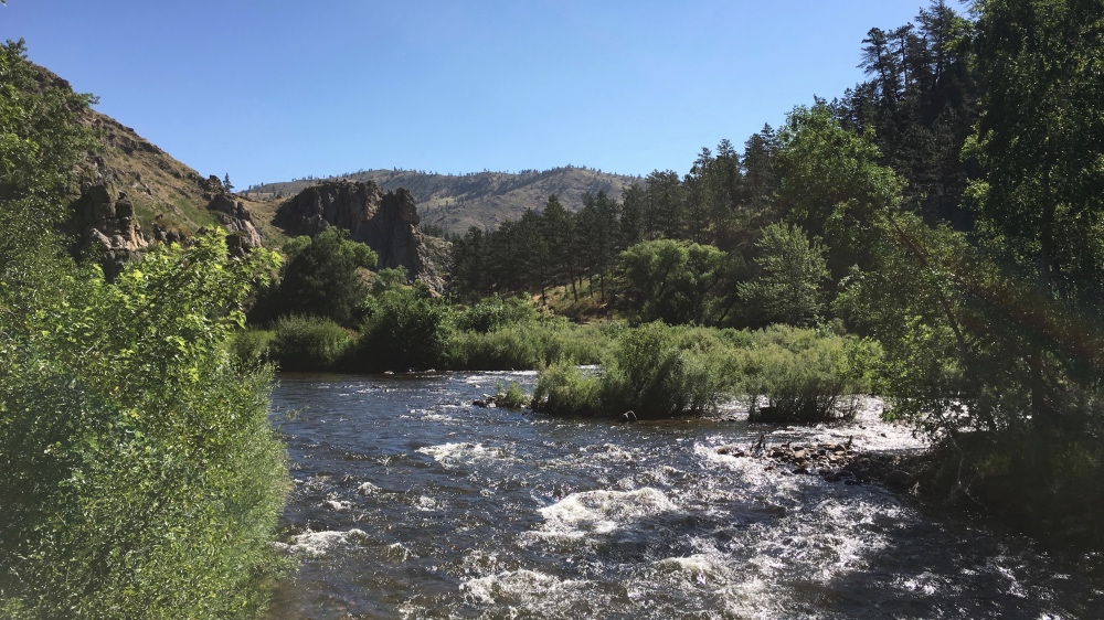 Poudre River Water in Your Tap