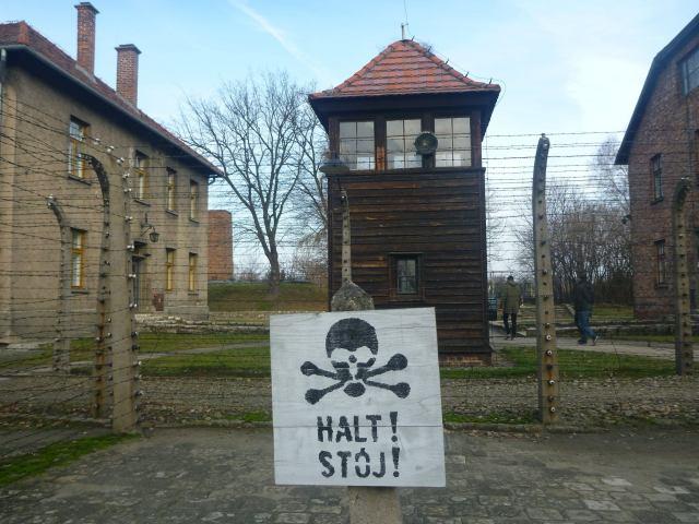 Nigdy Więcej Wojny: Touring Auschwitz German Death Camp