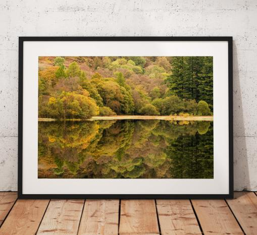 Nature Photography, Coniston, Yew Tree Tarn, Reflection, Autumn, Lake District, Nature, Trees, England. Landscape Photo. Home Decor, Art